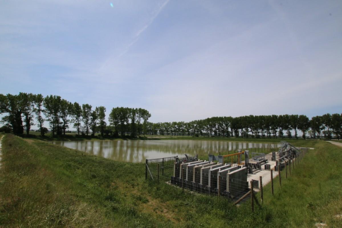 2 la base de vie chnatier réhabilitée en roselière  soumise à marée 1 an après travaux.JPG